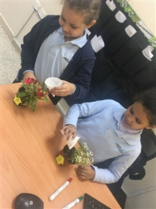 Grade 2 students investigated what do plants need to grow?