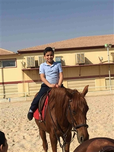 """Horse Riding Gr 3"""